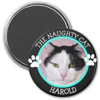 LE CAT VILAIN : Bouton humoristique de photo de Magnet Rond 7,50 Cm