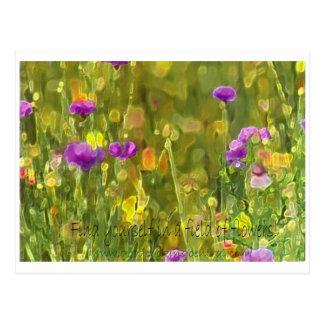 Le champ fleurit la carte postale