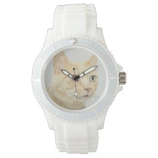 Le chat avec des yeux s'ouvrent au loin montres