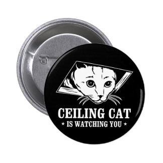 Le chat de plafond vous observe badge