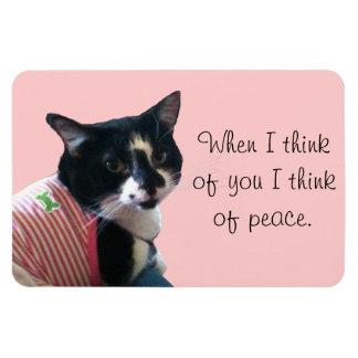 Le chat mignon de smoking pensent au magnet de