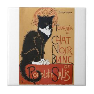 Le Chat Noir et Blanc Petit Carreau Carré