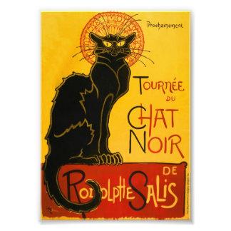 Le Chat Noir le cru de Nouveau d'art de chat noir Photographies