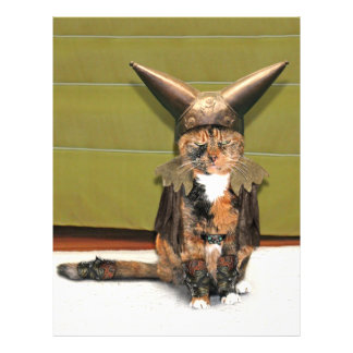 Le chat nordique ne s amuse pas prospectus customisé