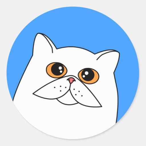 Le chat persan blanc avec l'orange observe des adhésifs ronds