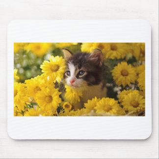 Le chaton renifle les marguerites jaunes tapis de souris