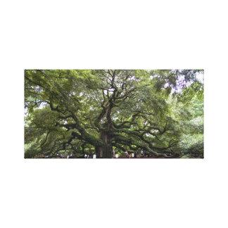 Le chêne d'ange est copie de toile d'arbre de 400