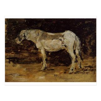 Le cheval blanc par Eugene Boudin Cartes Postales