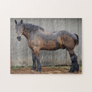 Le cheval foncé à la ferme après la pluie puzzle