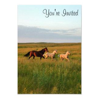 Le cheval jumelle la jument et pouline invitation