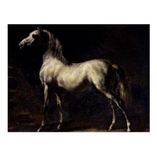 Le cheval vintage carte postale