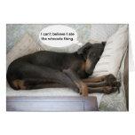 Le chien drôle obtiennent la carte bonne
