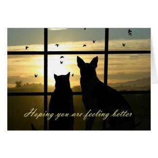 Le chien et le chat mignons dans la fenêtre cartes
