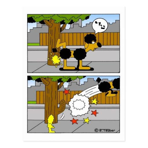 Le chien pisse à l'arbre cartes postales
