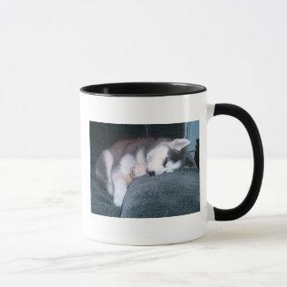 Le chiot dort tasse