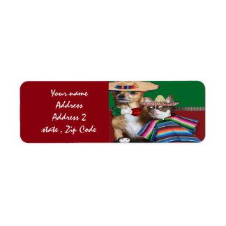 Le chiwawa mexicain poursuit des étiquettes de