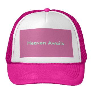Le ciel rose précieux attend le casquette