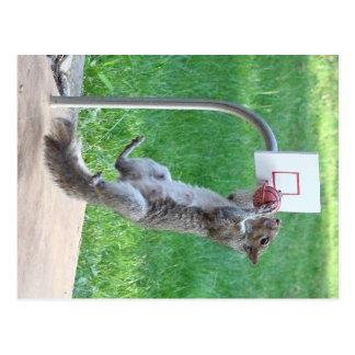 Le claquement d'écureuil trempent carte postale