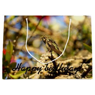 Le colibri d'Anna féminine, la Californie, photo Grand Sac Cadeau