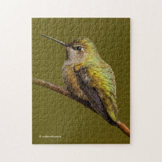 Le colibri d'Anna sur l'écarlate Trumpetvine Puzzle