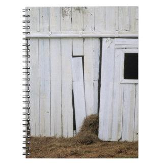Le collage de cheval dirigent la fenêtre de grange carnet à spirale