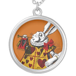 Le collier blanc de lapin