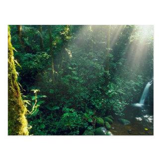 Le Costa Rica Carte Postale