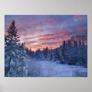Le coucher du soleil vif peint le ciel au-dessus d posters