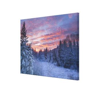 Le coucher du soleil vif peint le ciel au-dessus toiles