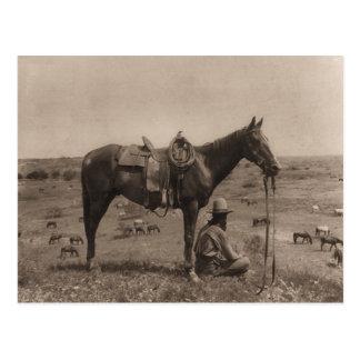 Le cowboy de cheval 1910 carte postale