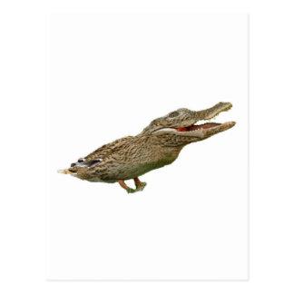 Le Crocoduck Carte Postale
