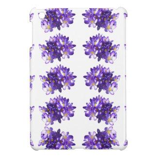 Le crocus blanc de lavande lilas fleurit la mini c