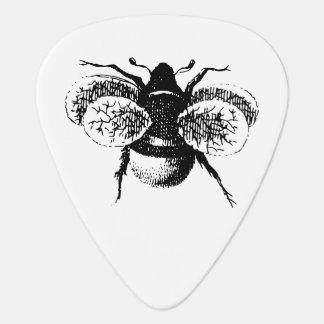 Le cru gaffent l abeille onglet de guitare