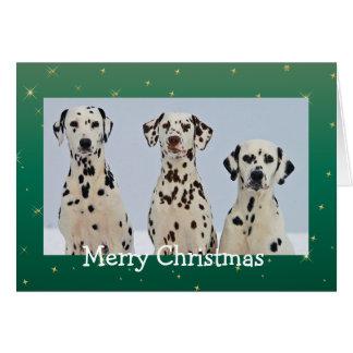 Le Dalmate poursuit la belle carte de Noël de