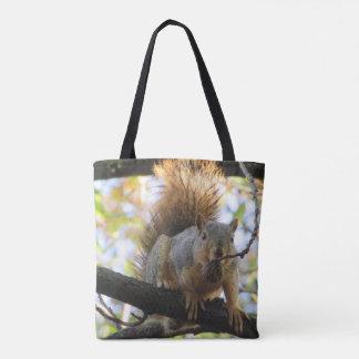 Le double mignon drôle d'écureuil a dégrossi sac