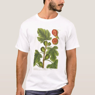 """Le figuier, plaquent 125 """"d'un de fines herbes t-shirt"""