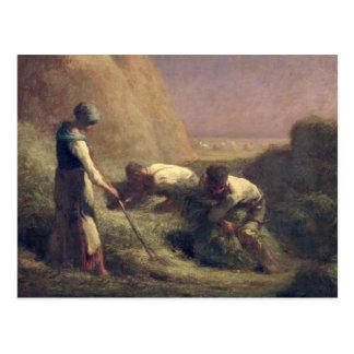 Le foin Trussers, 1850-51 Cartes Postales