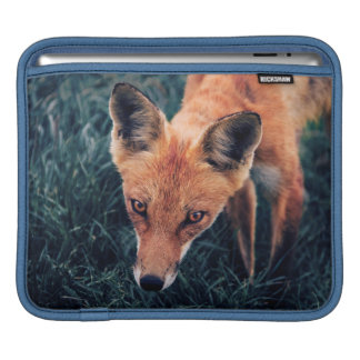Le Fox rouge Housse iPad