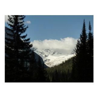 Le glacier de Jackson donnent sur au parc national Carte Postale