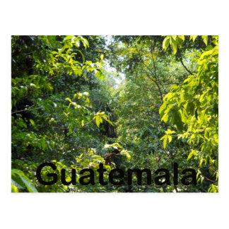Le Guatemala Cartes Postales