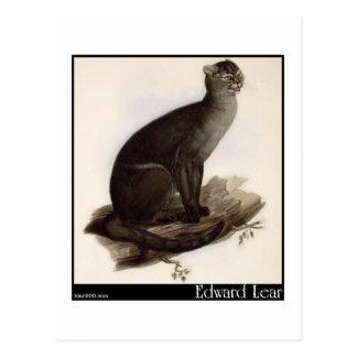 Le Jaguarundi d'Edward Lear (Yagouarondi) Carte Postale