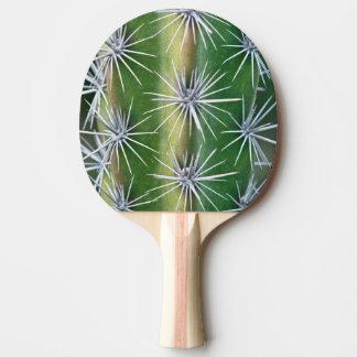 Le jardin botanique de Huntington, cactus de Raquette De Ping Pong