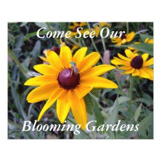 Le jardin botanique Noir-Eyed de Susan voyage l in Prospectus En Couleur