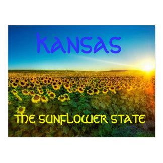 """Le Kansas """"la carte postale de State de tournesol"""