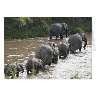 Le Kenya, aucune eau aucune expédition de rivière Carte De Vœux