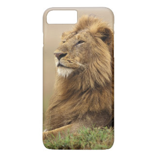 Le Kenya, masai Mara. Lion de mâle adulte sur le Coque iPhone 8 Plus/7 Plus