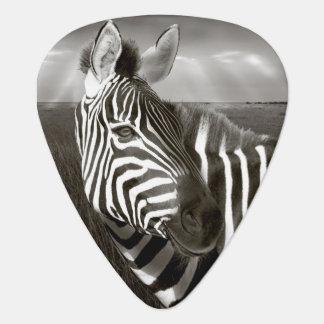 Le Kenya. Noir et blanc de zèbre et de plaine Onglet De Guitare