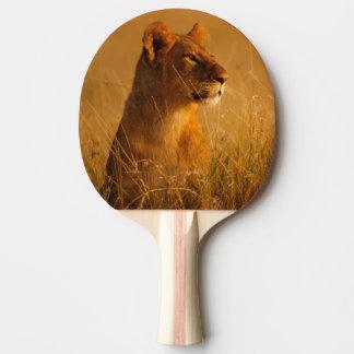 Le Kenya : Réservation de jeu de Mara de masai, Raquette De Ping Pong