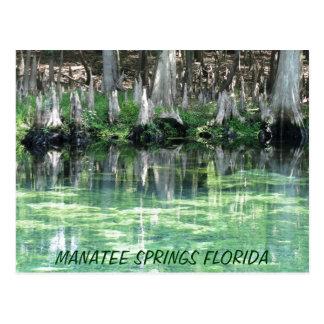 Le lamantin jaillit carte postale de la Floride