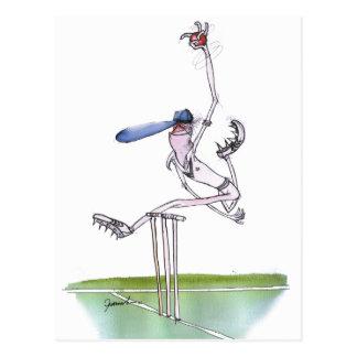 le lanceur - cricket, fernandes élégants cartes postales